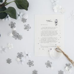 Dream Chaser: a personalised, magical Fairy letter from the International Elf Service. Designed to help support your child's emotional health and development.