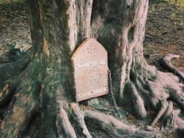 Official Guidelines When Making A Woodland Fairy Door