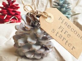 Handmade Christmas: Pinecone Fire Starters