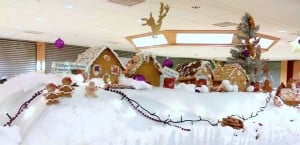 Gingerbread House Magic - Guest Post by Ruth Harris-Orford for the International Elf Service