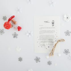 Mistake Can Be A Good Thing: a personalised, magical Tooth Fairy letter from the International Elf Service. Designed to help support your child's emotional health and development. Perfect for girls and boys. On 100% Recycled Paper.