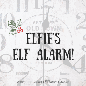 Don't get caught out again. Elfie's Elf Alarm will email you at 9pm GMT each night from the 31st October to the 30th November. Never forget to sort out your Elf Magic again! By the International Elf Service