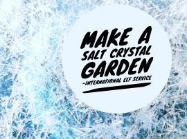 How To Make A Salt Crystal Garden!