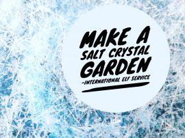 How To Make A Salt Crystal Garden!